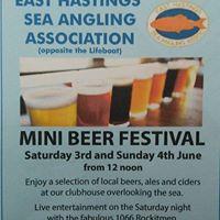 Mini Beer Festival
