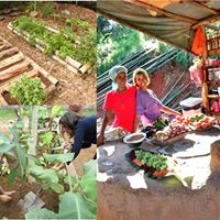 Vivncia em Permacultura - Saneamento Ecolgico e Horticultura
