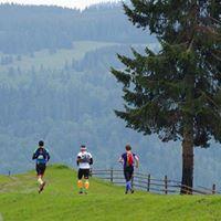 Ultrabug 100km 3-days Carpathian Mountains Romania