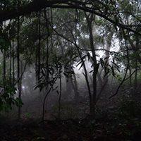 Andharban Dense Forest Trek