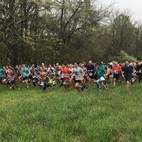 Race 3 - Enoch Lee Memorial 5k10k