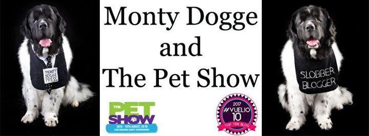 Monty at the Pet Show