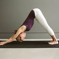 6-wk beginners yoga course