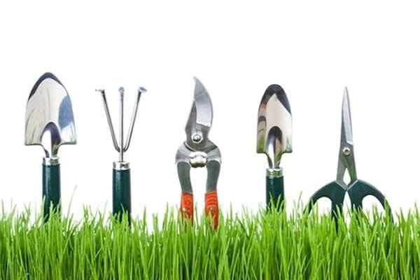 Garden Work Day at Broadmor Elementary School Tempe