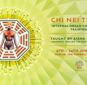 Chi Nei Tsang - Internal Organ Chi Massage Training