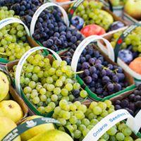 Opening Day - Ridgeway Farmers Market