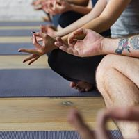 Beginners (four-week) meditation Course