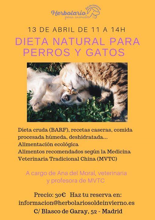Taller Dieta natural para perros y gatos
