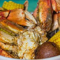 Dungeness Crab is Back