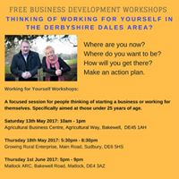 Working for Yourself Workshop
