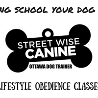 Lifestyle Obedience Class