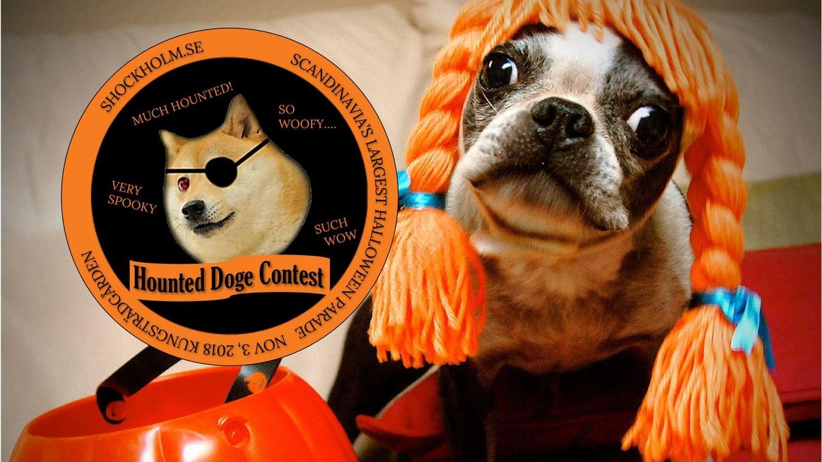 Hounted Doge Costume Contest