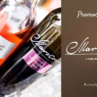 Promocija vina Markota