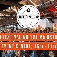 Gin Festival Maidstone 2018 -No.103