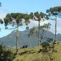 Pernada Boa em Morrinhos do Sul com Trekking POA