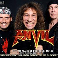 TOUR ANVIL METAL Forces