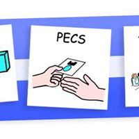 PECS Level 1 Workshop in Dublin
