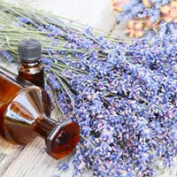 Introduction to Aromatherapy for You and Your Family