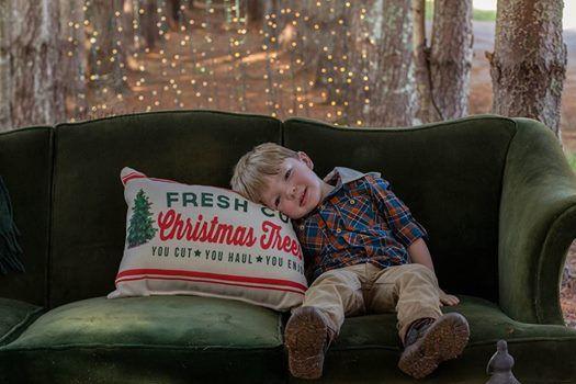 christmas mini event - Country Cove Christmas Tree Farm