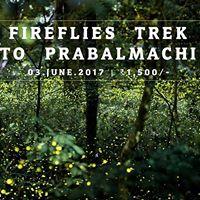 Fireflies Special Night Trek to Prabalmachi