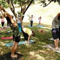 Yoga ao Ar Livre e a 4Feira Vegana de Campinas e Regio