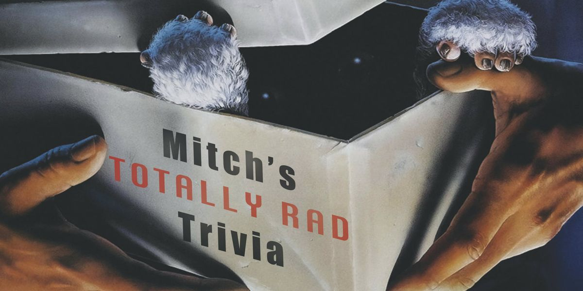 Mitchs Totally Rad Trivia Night