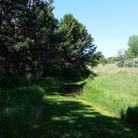 National Trails Day 5k and 10k walks