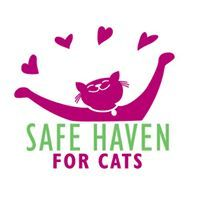 SAFE Haven for Cats
