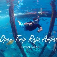 Open Trip Raja Ampat 10-13 Mei 2018