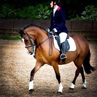 North Cheshire Equestrian Dressage
