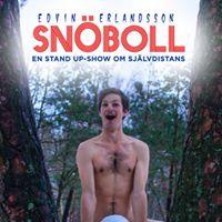 Snboll - En magisk stand up-show