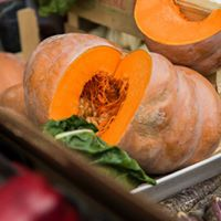Sustainability in the catering industry