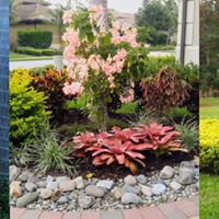 Landscape Designs &amp Solutions