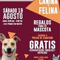 Campaa Canina y Felina