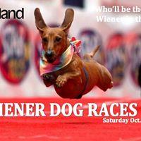 OktoberFest Wiener Dog Races at Fairlawn Plaza