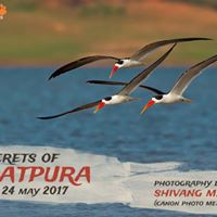 Secrets of Satpura