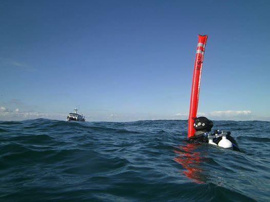 Noordzee duiken - volzet