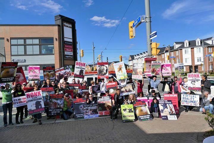 Toronto Slaughterhouses Exposed