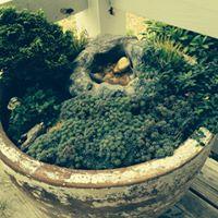 Enchanted Garden Workshop
