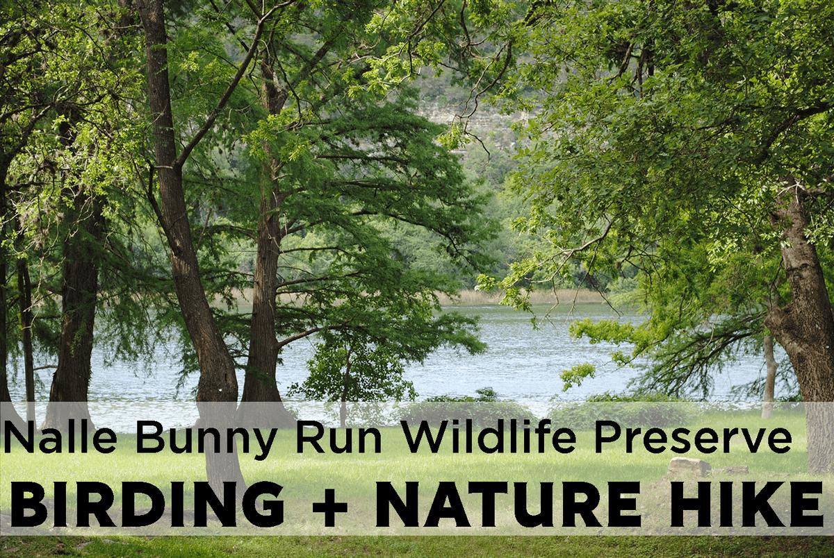 Monthly Birding & Nature Hike