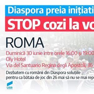 Roma - Diaspora preia iniiativa Stop cozi la vot