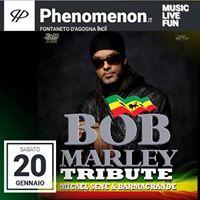 Bob Marley Tribute - Micael Sene e Barmagrande  Phenomenon Live