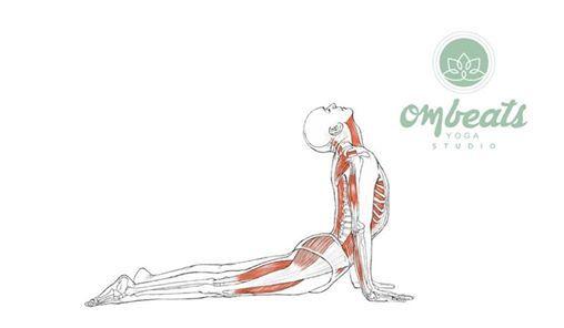 Yoga Anatomy And Physiology Workshop With Jason Mastrian At Om Beats