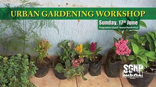 Urban Gardening Workshop- By Mr. Anand Pendharkar