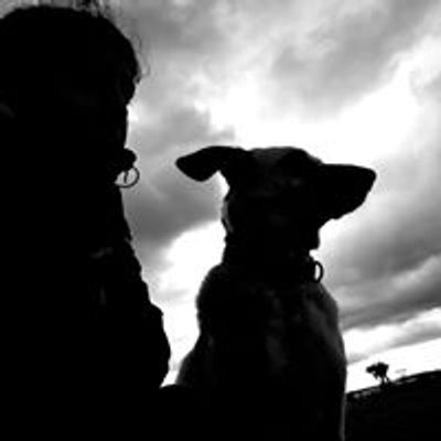 Adiestramiento Canino Badajoz