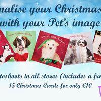 Free Professional Pet Photoshoot