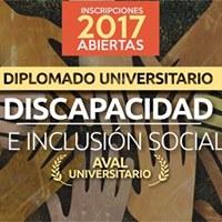 Diplomado Univ. en Discapacidad e Inclusin Social (Comisin 2)