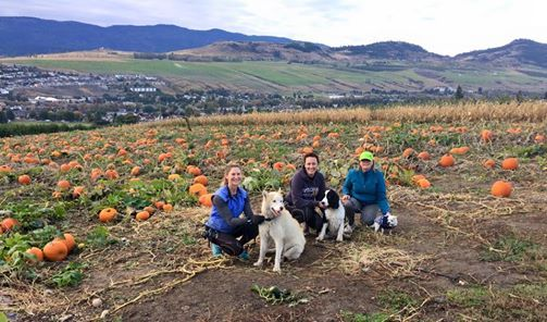 Pumpkin Patch Hike