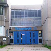 Tecumseh Senior Public School 50th Anniversary