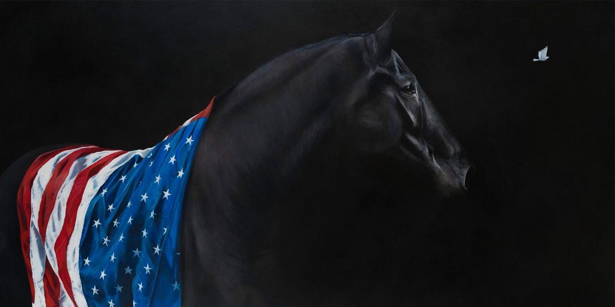 The Darkhorse Series Exhibition & Talk